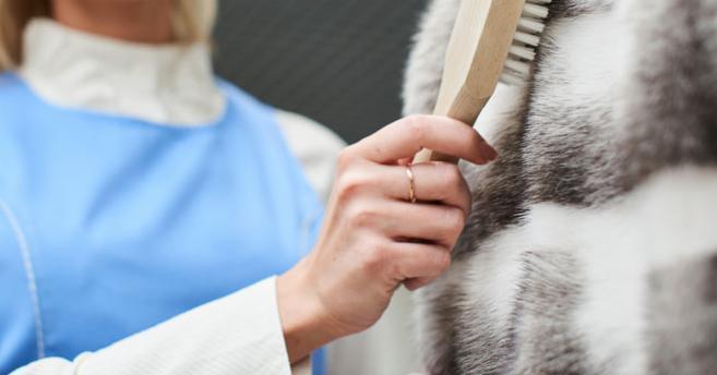 rengöring och skötsel av päls